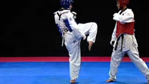 UPHM Taekwondo